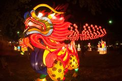 Drake och lykta som hänger för kinesisk beröm för nytt år Royaltyfri Bild