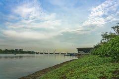 Drake` s i luften på Marina Barrage arkivbilder