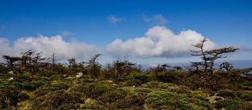 Drake-sköldpadda berg Fotografering för Bildbyråer
