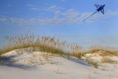 Drake som flyger över vita sanddyn royaltyfria foton