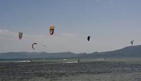 Drake som surfar nära Blace Royaltyfria Foton