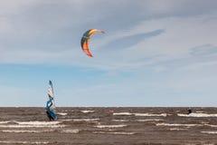 Drake som surfar och vindsurfar - extrem sport Arkivfoto