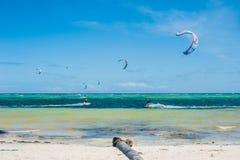 Drake som surfar på Boracay Royaltyfri Bild