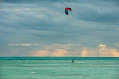 Drake-surfa på solnedgångs bakgrund Royaltyfri Foto