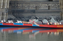 Drakefartyget Royaltyfri Foto