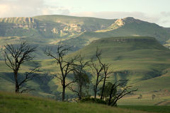 Drakensberg do norte. Imagens de Stock
