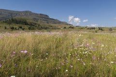 Drakensberg, Mountain View del Sudafrica al giorno Immagine Stock