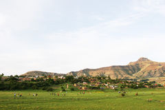 Drakensberg Mountains Royalty Free Stock Photography