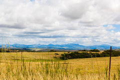 Drakensberg Mountains. A landscape with the Drakensberg mountains in the background. It is summer here and there is no snow on the famous mountains in South royalty free stock photos