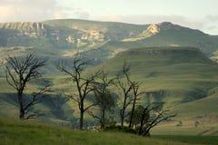 Drakensberg nordico. Immagini Stock