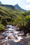 Drakensberg stream Stock Photography