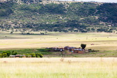 Drakensburg huts Stock Photography