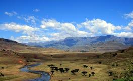 Drakensburg Sudafrica Fotografie Stock