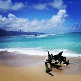 Drakestrand på Kanaha, Maui Royaltyfri Bild