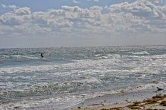 Drakesurfare mot härligt vatten och himmel Arkivbilder