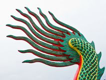 drakesvan Arkivfoton