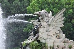 drakeutloppsrörvatten Royaltyfri Fotografi