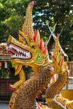 Drakevaktstaty på ingången för buddistisk tempel Royaltyfria Foton
