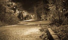 dramat nocy malownicza droga kołysa niebo Zdjęcia Stock