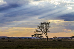 Dramatic african landscape Royalty Free Stock Photo