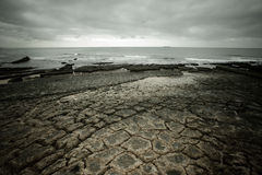 Dramatic Atlantic coast at low tide. Cracked stones tinted Royalty Free Stock Photo