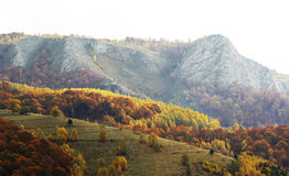 Dramatic autumn in Romanian mountains Stock Image