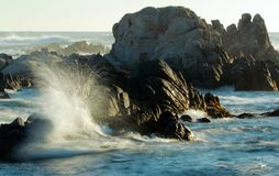 Waves crashing on rocky coastline near Monterey, California, USA. Dramatic background of ocean waves on Asilomar State Marine Reserve, Pacific Grove near Royalty Free Stock Photos