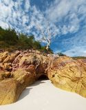Dramatic beach landscape Royalty Free Stock Photos