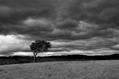 Dramatic black-and-white landscape Stock Images