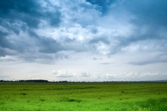 Dramatic blue sky and green meadow Stock Photo