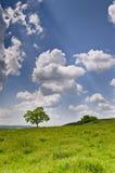 Dramatic Blue Sky Royalty Free Stock Photos