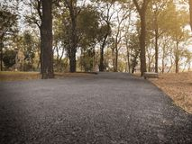 Dramatic cloes up asphalt path way in fall autumn public park with warm light for background , relax or fresh concept vintage tone stock photos