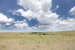 Dramatic cloud and the vast grassland of Masai Mara National Park Stock Images