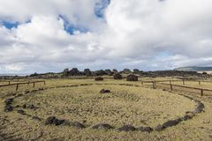 Moais on the ground in the Vaihu site on Easter Island royalty free stock photo