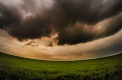 Dramatic clouds over green field. Dramatic sky with dramatic clouds clouds over green field of green wheat Royalty Free Stock Photography