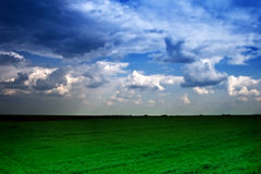 Dramatic cloudy sky and green field Royalty Free Stock Photos