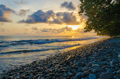 Dramatic coast with rocky volcanic beach, green tree, waves and amazing sunset, Limbe, Cameroon Stock Images