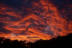 Dramatic Crimson Stratocumulus Sunrise cloudscape. Australia. A vibrant dramatic crimson coloured stratocumulus cloudy sunrise landscape with a tree silloutte stock image