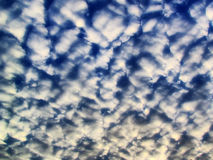 Dramatic cumulus summer clouds Royalty Free Stock Photo