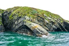 Dramatic curved rock layers plunge from clifftop into teal and aqua ocean waves on Loop Head Peninsula, County Clare, Ireland. Stunning coastal cliff rock stock photos