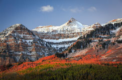 Dramatic dawn fall glow in the Wasatch Mountains. Stock Photo