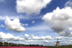 Dramatic Dutch sky Stock Image