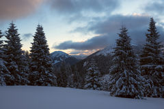 Dramatic evening landscape in the mountains after the snow storm Royalty Free Stock Images