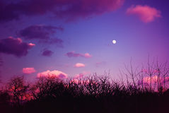 Dramatic Evening Sky with Full Moon Royalty Free Stock Image