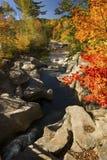 Dramatic fall foliage along Baker River, Warren, New Hampshire, Royalty Free Stock Photography