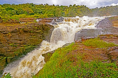 Dramatic Falls in the Wilds Stock Image
