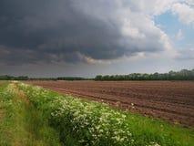 Dramatic field Stock Image