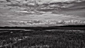 Dramatic Florida Sky B&W Royalty Free Stock Photography
