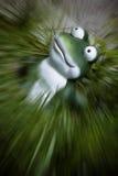 Dramatic garden frog Stock Image