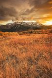Dramatic golden vertical sunset in the Wasatch Mountains, Utah, USA. royalty free stock photos